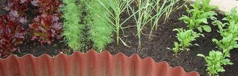 Ограждения на садовом участке из подручных материалов. Грядки из шифера