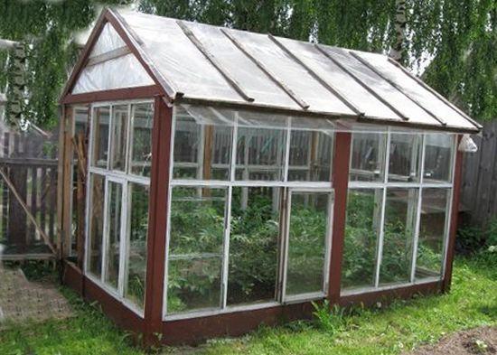 готовое помещение для растений