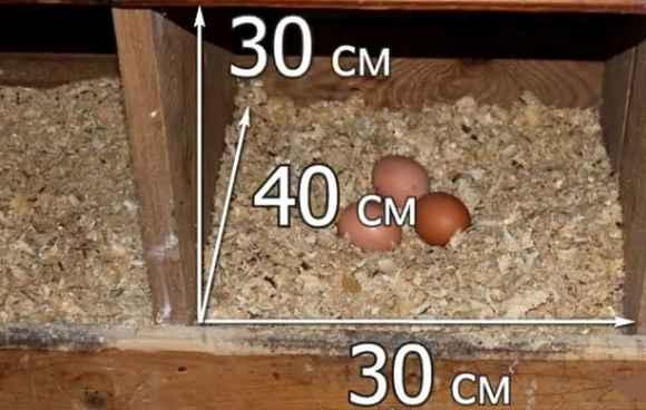 как сделать гнезда