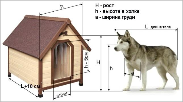 как замерить пса